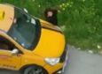 O taksici, genç kızın ağabeyi çıktı