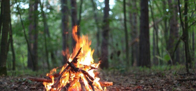 Ormana komşu arazilerde ateş yakılması yasaklandı