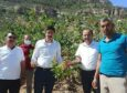 Mut'ta Antep Fıstığı hasadı yapıldı