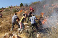 Bu sefer yangın savaşçıları inşaat işçileri oldu